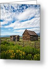 Cabin In Leadville Colorado Greeting Card