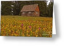 Cabin On Grand Mesa Greeting Card