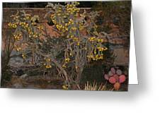 Cacti Along The Garden Wall Greeting Card