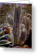 Cacti Lights Greeting Card