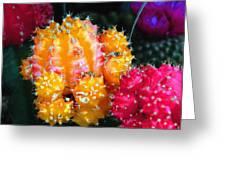 Cacti Watercolor Effect Greeting Card