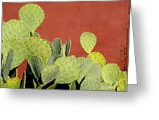 Cactus Against Orange Wall Greeting Card