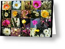 Cactus Collage Greeting Card