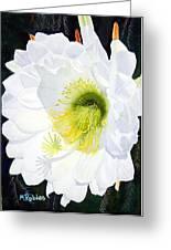 Cactus Flower II Greeting Card
