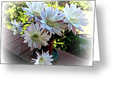 Cactus Flower Perfection Greeting Card