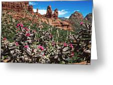 Cactus Flowers And Red Rocks Greeting Card