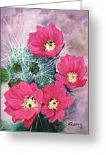Cactus Flowers I Greeting Card