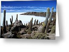 Cactus Forest And Salar De Uyuni Greeting Card