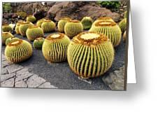 Cactus Garden On Lanzarote Greeting Card