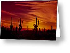 Cactus Glow Greeting Card