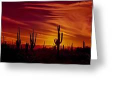 Cactus Glow Greeting Card