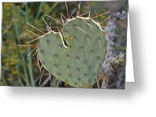 Cactus Heart Greeting Card by Old Pueblo Photography