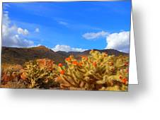 Cactus In Spring Greeting Card