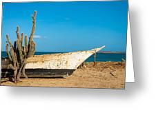 Cactus On A Beach Greeting Card