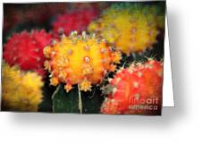 Cactus Topknots Greeting Card