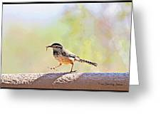 Cactus Wren With Worm Greeting Card