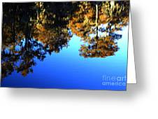Caddo Lake Reflections Greeting Card