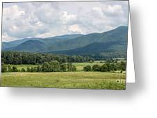 Cades Cove In Summer Greeting Card by Todd Blanchard