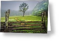 Cades Cove Misty Tree Greeting Card