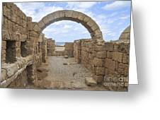 Caesarea The Hippodrome Greeting Card