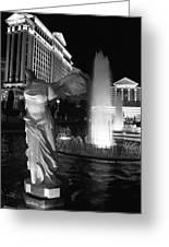 Caesars Fountain Bw Greeting Card