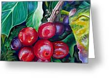 Cafe Costa Rica Greeting Card