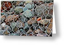 Caged By Barbara Griffin Greeting Card