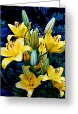 Caged Lilies Greeting Card