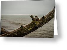 Cairn On Superior Greeting Card