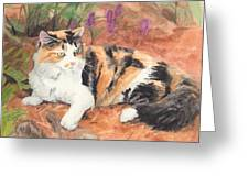Calico Cat In Garden Watercolor Painting Greeting Card