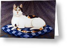 Calico Cat Portrait Greeting Card
