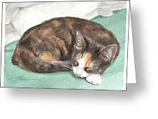 Calico Cat Sleeping Watercolor Portrait Greeting Card
