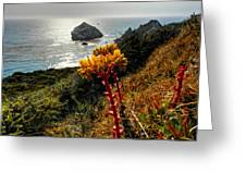 California - Big Sur 006 Greeting Card by Lance Vaughn