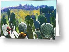 California Big Sur Flowers Greeting Card