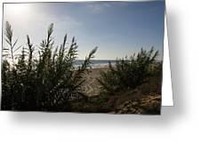 California Carlsbad Beach Hidden View Greeting Card