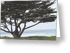 California Coast # 8 Greeting Card