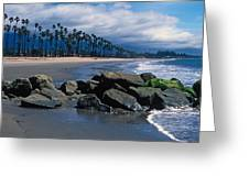California Dreamin Greeting Card