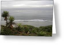 California Dreams Greeting Card