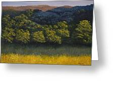 California Foothills Greeting Card