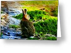 California Hare - 0297 Greeting Card