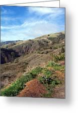 California Hillside Greeting Card