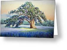 California Oak Greeting Card