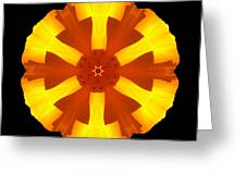 California Poppy Flower Mandala Greeting Card by David J Bookbinder