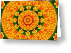 California Poppy Pizzazz Greeting Card