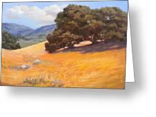 California Summer Greeting Card
