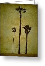 California Trees Greeting Card