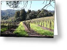 California Vineyards In Late Winter Just Before The Bloom 5d22053 Greeting Card