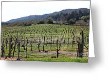California Vineyards In Late Winter Just Before The Bloom 5d22088 Greeting Card