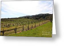 California Vineyards In Late Winter Just Before The Bloom 5d22114 Greeting Card