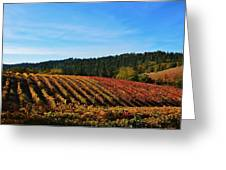 California Winery Apple Hill Greeting Card